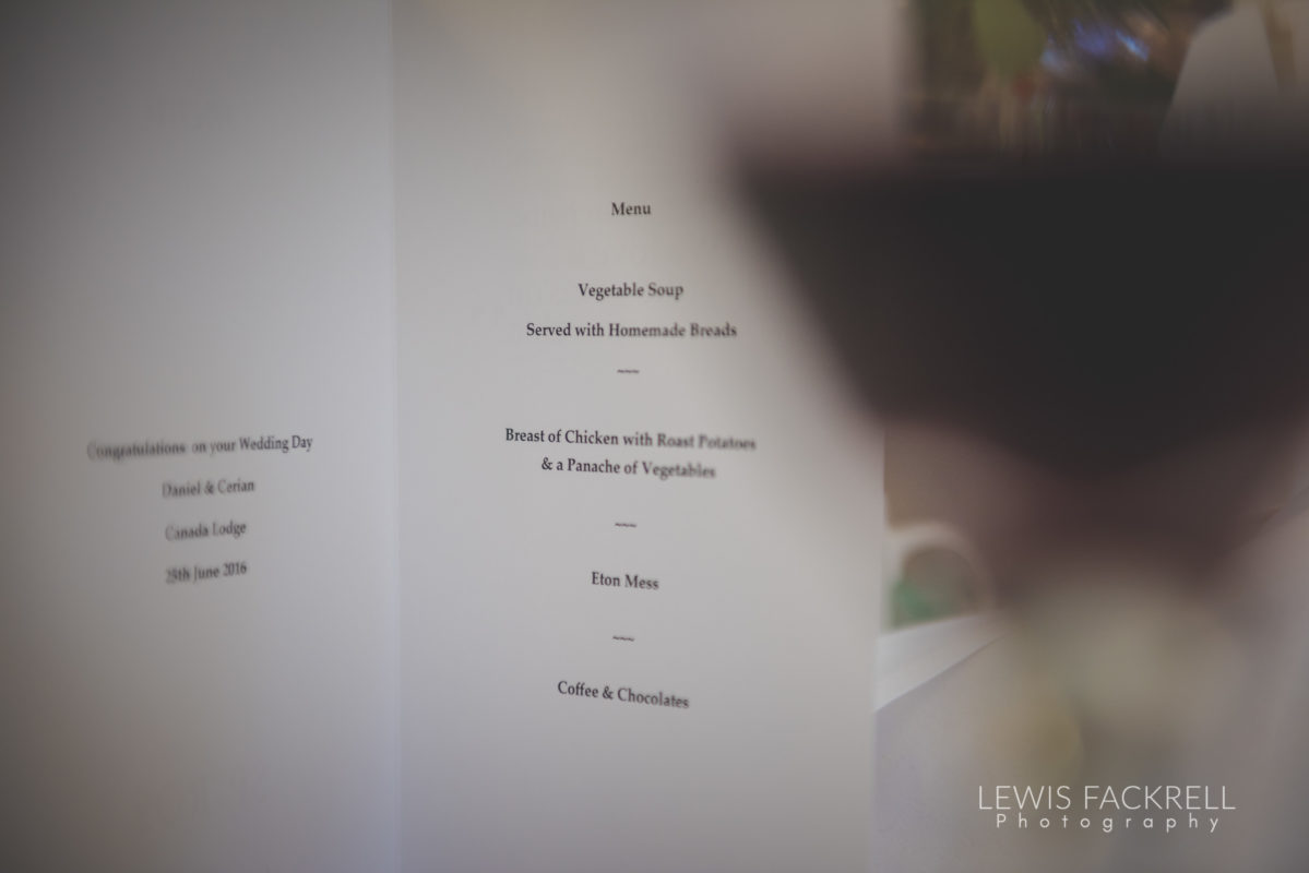 Lewis-Fackrell-Photography-Wedding-Photographer-Cardiff-Swansea-Bristol-Newport-Pre-wedding-photoshoot-cerian-dan-canada-lake-lodge-llantrisant--67